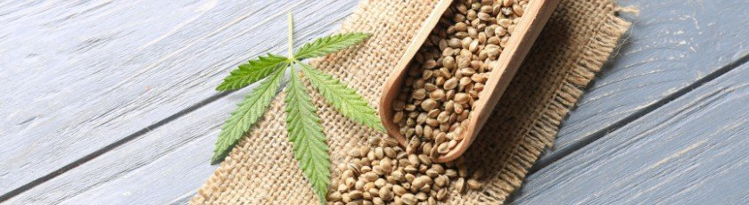 A wooden scoop with cannabis seeds and a single marijuana leaf