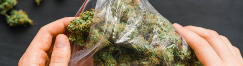 How long does weed stay good in a plastic bag_
