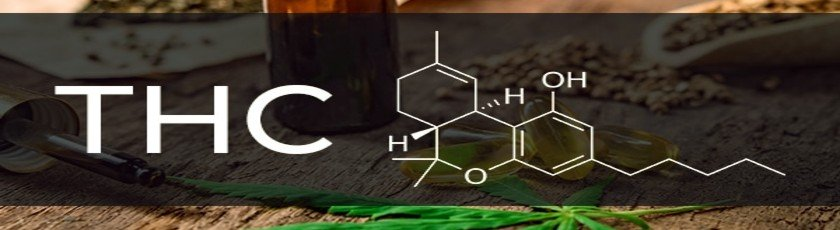 Chemical composition of THC with cannabis leaves and seeds on the background